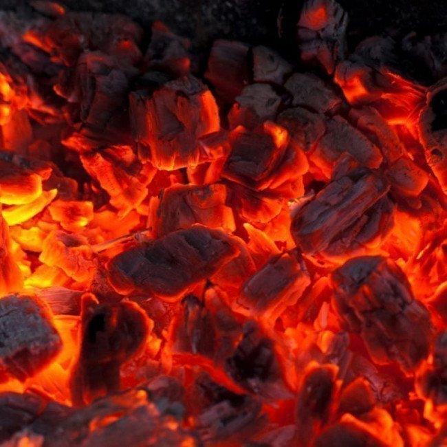 Фото 4 в 1 - Набор для барбекю Zeus (спички+разжигатель+древесный уголь+раздуватель), 1,5кг купить в Украине по недорогой цене для рыбалки
